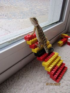 Need to get me some Lego!