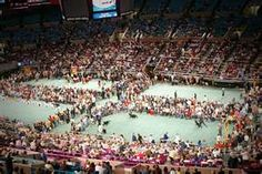 New York City : New Westminster Dog Show. The largest show on earth Old English Sheepdog Puppy, Westminster Dog Show, Shows In Nyc, Famous Dogs, American Sports, I Love Dogs, Documentaries, Image Search, Dolores Park