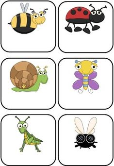 Bees, Bugs and Mini Beasts Themed Blank Classroom Labels - $5