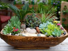 Spring Table With Copper, Succulents, And Hanging Plants Antique Dough Bowl Turned Succulent Planter regarding ucwords] Succulent Bowls, Succulent Gardening, Succulent Arrangements, Succulent Terrarium, Garden Planters, Container Gardening, Gardening Tips, Balcony Garden, Garden Oasis