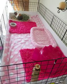 2x4 C&C guinea pig cage in pink