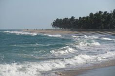 Praia do Gunga, em Alagoas - Brasil