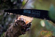 bone saw for deer