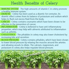 Celery is an excellent finger food and celery ribs make perfect little boats for holding peanut butter, cottage cheese or pimento spread. LIKE and SHARE if you find this information useful.