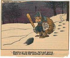 Image result for vintage groundhog day images