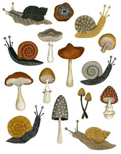 Mushrooms & Snails by Annya Karina Marttinen Snail Art, Mushroom Art, Mushroom Crafts, Mushroom Drawing, Foto Art, Art Inspo, Art Reference, Art Drawings, Original Paintings