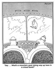 Best Far Side Cartoons | ... - Reminds me of this Far Side cartoon... - Democratic Underground