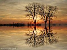 """Sunset.."" by Željko Salai https://gurushots.com/zeljko.salai/photos?tc=2f714573798c4445d3810149174a9e47"