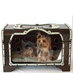 Snoozer Hide A Dog Box Seafoam & Brown Dog Bed  $279.99   Petco