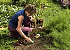 C'est une période d'activité intense au potager ! Voici une liste pour ne rien oublier. Picnic Blanket, Outdoor Blanket, Nature, Gardening, Garden, Spring Vegetable Garden, Organic Vegetables, Plants, Entertaining