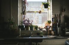House Tour: An Airy Plant-Filled Brooklyn Loft | Apartment Therapy