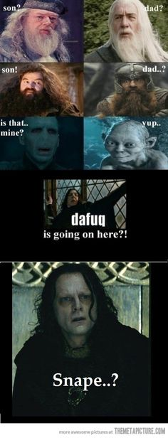 LOL OMG Voldemort and Gollum.... That us the best part of this!!!