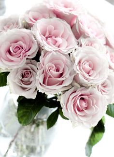 Shabby Chic- I would never get tired of looking at these beautiful roses.