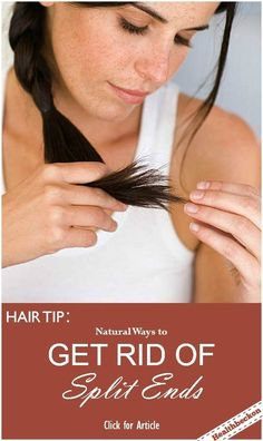 Get Rid of Split Ends (Hair Tip): Split ends become a very common hair problem for many women. Split ends can take away the beauty of your whole long hair and at times. Here are some easy- to- make or easy-to-do homemade remedies which can cure the problem of split ends.