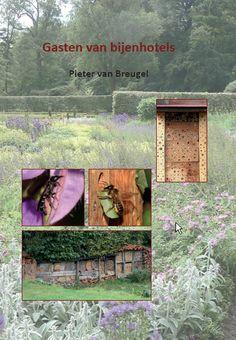 Bestuivers > Publicaties > Gasten van bijenhotels (gratis download) --- determinatie van bijensoorten http://determineren.nederlandsesoorten.nl/linnaeus_ng/app/views/matrixkey/index.php?epi=18#