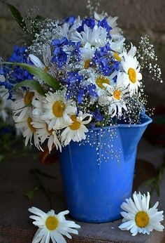 the daisy cottage . X ღɱɧღ Happy Flowers, My Flower, Flower Power, Beautiful Flowers, White Flowers, Beautiful Flower Arrangements, Floral Arrangements, Bouquet Champetre, Sunflowers And Daisies