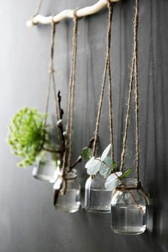 Diy wall decor 480337116499391814 - Eclectic Natural Mason Jar Hanging Vases So. - Diy wall decor 480337116499391814 – Eclectic Natural Mason Jar Hanging Vases Source by - Hanging Vases, Hanging Plants, Diy Wall Decor, Diy Home Decor, Glass Jars, Mason Jars, Clear Glass, Mason Jar Planter, Deco Nature