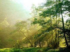 Panoramio photos - Zatnaktel Cz - Picasa ウェブ アルバム
