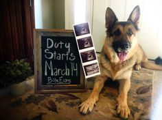 Our baby announcement!