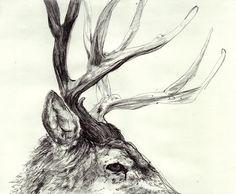 #deer #antlers #drawing #illustration