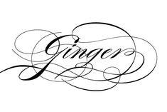 Burgues Script for Tattoo Font Tattoos   tattoos picture script tattoo fonts