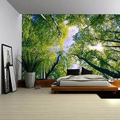 Wall26® - Sky View from Below a Tree Forest - Wall Mural,... https://www.amazon.com/dp/B01BY43QGK/ref=cm_sw_r_pi_dp_CfuIxb11QRYG6