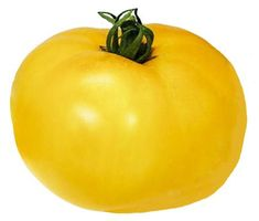 Heirloom Tomato Seeds, Tomatoes, Non-GMO, Untreated, Organic Seed – Sandia Seed Company Heirloom Tomato Seeds, Heirloom Tomatoes, Container Gardening Vegetables, Vegetable Garden, Potted Fruit Trees, Types Of Lettuce, Yellow Tomatoes, Red Tomato, Fresh Salsa