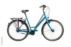 Voorbeeld van een sportieve dames fiets met Shimano Alfine 8 versnellingen en een vaste voorvork met kettingbeschermer in de kleur van het frame.