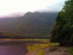 Nelliampathi Hills, Palakkad