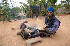 Tressage du bambou près de Luang Namtha