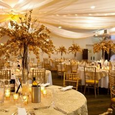 My gold themed wedding