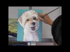 Custom Dog Portrtait - Painting Demonstration of Rambo the Morkie - http://ww.ninahuangart.com  My animal paintings are known for their contemporary, vibrant, and joyful nature, while still capturing the likeness and essence of the subjects.  9x12 inches custom animal portrait - $225.00 - orders can be placed at http://www.ninahuangart.com/order