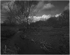River Erewash | April 2015 | [Graflex Speed Graphic 5x4 Schneider Super-Angulon 90mm/f8 - FP4 ei125 - 1/60th f22]  Slight variation on Caffenol CL: 400ml / 6.4g soda / 4g vit-c / 1.4g KBr / 16g Asda Rich Roast instant coffee / 21ºc for 72.5mins / semi-stand agitations in Paterson Orbital rocked gently for first 30 secs then 3 rocks at 2.30, 6.30, 14.30 and 32.30 then stand for 40mins