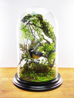 The mirage of an enchanted forest. This forest floral composition named Millicent is entirely designed and created by me, at base of high quality artificial plants. Protected by a glass dome, it requires no maintenance.  Dimension (with the wooden base): 30 x 30 x 43 cm  Neat and secure in polystyrene + double packing strong cardboard boxes. Your package will be insured in case of loss or damage.  Delivery within 3 days.  Free delivery in metropolitan France.