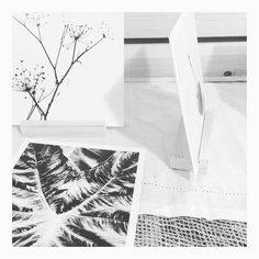 Black and white combo available soon on etsy. Side view of the new stands that will be included in the set! #blackandwhitephoto #blackandwhiteonly