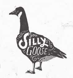 Silly goose