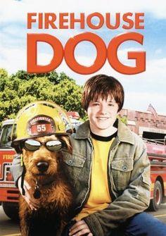Yıldız Köpek İş Başında - Firehouse Dog - Google'da Ara