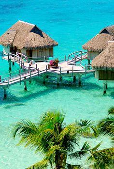 Paradise<3