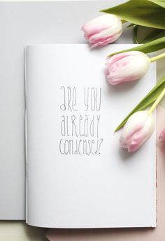 Handlettering Tipps 4: Condensed Fonts lernen - Rosy & Grey