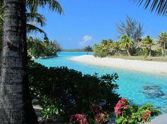The St. Regis Bora Bora Resort: The Resort
