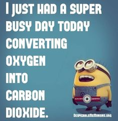 Funny lazy quotes - i just had a busy day sayings юмор. Lazy Quotes Funny, Silly Love Quotes, Lazy Humor, Funny Quotes About Life, Funny Love, Really Funny, Fun Quotes, Super Funny, Funny Minion Memes