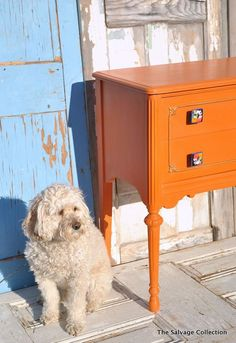 Barcelona Orange Chalk Paint® decorative paint by Annie Sloan The Salvage Collection: Scary Mary -