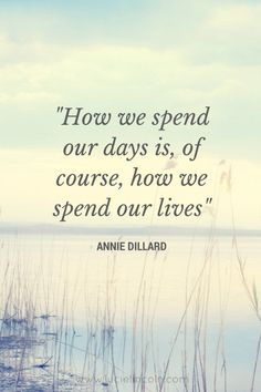 """""""How we spend our days, is of course how we spend our lives"""" ~ Annie Dillard"""