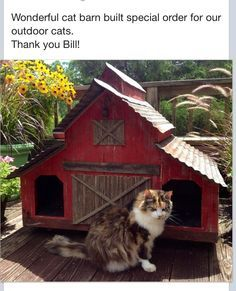 DIY cat house ideas can be made of simple, repurposed materials. These 15 inspirations will help you building cat shelters. Feral Cat House, Cat House Diy, Feral Cats, Outdoor Cat Shelter, Outdoor Cats, Cat House Outdoor, Cat Towers, Cat Enclosure, Super Cat