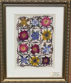 Pressed Flower Craft - Historic Perspective
