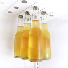 beer storage clips for the fridge! so clever!