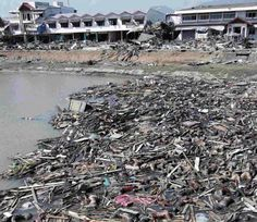 The Floating Bodies In Tsunami, 2004