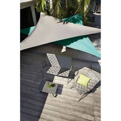 23 meilleures images du tableau cocotier nain coconut fruits veggies et tropical fruits. Black Bedroom Furniture Sets. Home Design Ideas