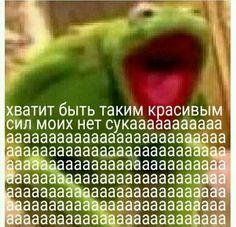 Funny Video Memes, Stupid Funny Memes, Funny Animal Memes, Cat Memes, Karma, Hello Memes, Happy Memes, Russian Memes, Cute Love Memes