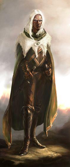 Drizzt 2 by paradanmellow on DeviantArt Elves Fantasy, Fantasy Races, High Fantasy, Fantasy Rpg, Medieval Fantasy, Fantasy World, The Elder Scrolls, Drizzt Do Urden, Dnd Elves